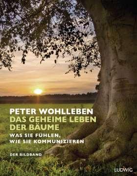Das geheime Leben der Bäume. Was sie fühlen, wie sie kommunizieren. Der Bildband. Mit dem vollständigen Text der Originalausgabe