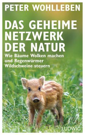 Das geheime Netzwerk der Natur. Wie Bäume Wolken machen und Regenwürmer Wildschweine steuern