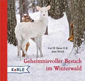 Geheimnisvoller Besuch im Winterwald Mini