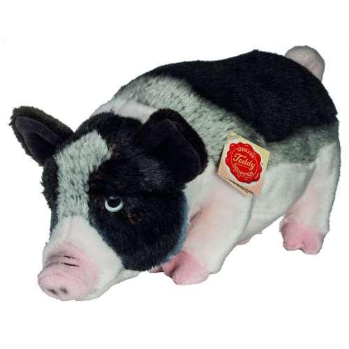 Minischwein. 33 cm